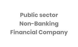 Public sector non-banking financial company
